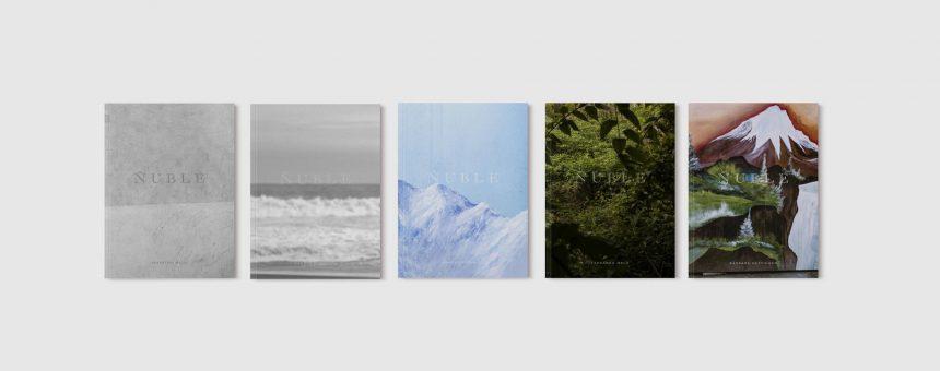 Fotolibro Ñuble. Retratos de la nueva región (2020)